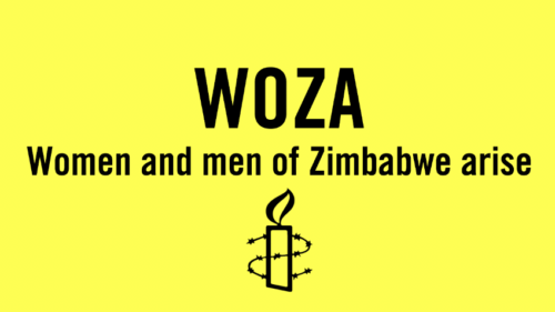 Amnesty International Einzelfall Women of Zimbabwe Arise (WOZA)