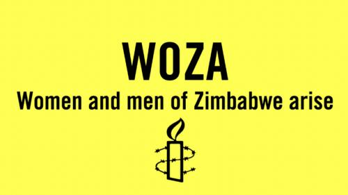 Amnesty International Einzelfall Women of Zimbabwe Arise (WOZA)